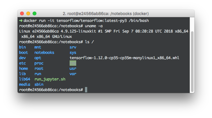 < Figure 2. A Tensorflow Docker container on macOS >